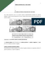 GUIA ENTEROS VIDA DIARIA.doc