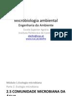 Diversidade Microbiana e Metabolica