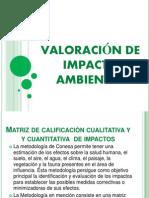 Valoracion de Ia (1)