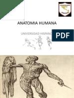 Anatomia Humana Univ Hispano