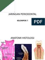 Jaringan Periodontal (1)