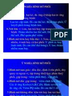 y+nghia+hinh+mo+phoi.pdf