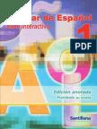 Auxiliar Español