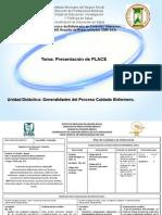 Formatos PLACE IMSS