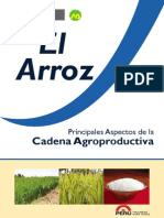 Agroeconomia Arroz Final2013