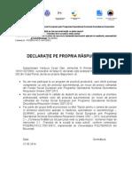 Declaratie Proprie Raspundere ELAMAN
