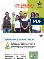 subprograma de higiene y seguridad en el trabajo 31may2014