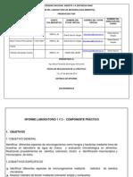 Informe Practica Microbiología Ambiental Bucaramanga