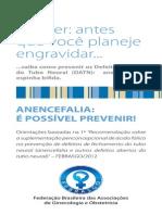 Anecefalia e Acido Folico