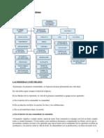 00075084.pdf