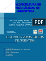 Argentina Presente y Futuro Ortiz Jorge
