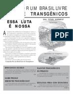 Jornal Transgenicos