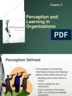 Organizational Behavior Chapter 3