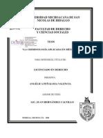 La Criminologia Aplicada en Mexico