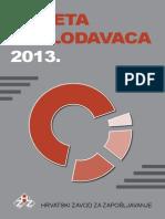 ANKETA POSLODAVACA 2013