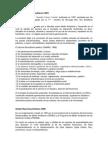 GEI Puntos 1-2-3.docx