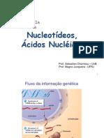 3 Nucleotídeos ÁcNucléicos MJ