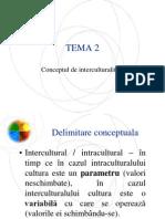 Curs Masterat Mngm Intercultural Tema 2