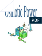 Osmotic Power