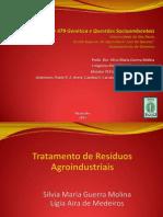 GSA-11-2013 Tratamento de Residuos Agroindustriais
