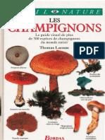Les Champignons (Thomas Laessoe 1998)