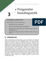 Topik 3 Pengenalan Sosiolinguistik