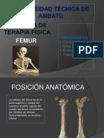 anato expo femur.pptx