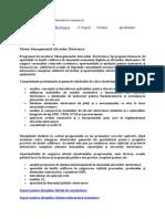 Managementul Afacerilor Electronice