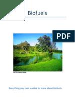 141-Biofuels+-+lesson