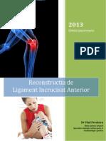 Reconstructia LIA