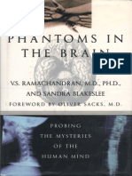 Phantoms of the human brain