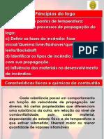 2princpiosdofogo-110309142057-phpapp01