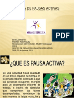 programadepausasactivasmedaasesores-110528122906-phpapp01