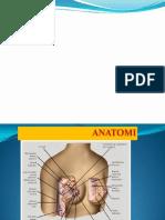 diagnosa DF.ppt.pptx