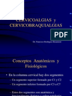 Clase Cervico Cervicobraquial