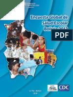 Bolivia 2012 GSHS Report