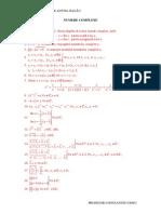 Teorie Si Aplicatii Rezolvate Numere Complexe