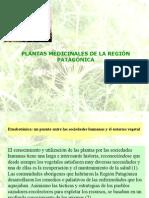 Plantas Medicinales de La Región Patagónica