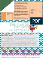 Caracteristicas Del Pe2011