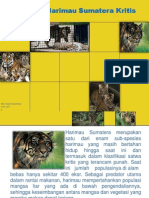 Penurunan Harimau Sumatera.pdf
