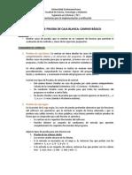 Guía de Ejericios (P. Caja Blanca y Negra)