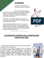Expocision Constitucion