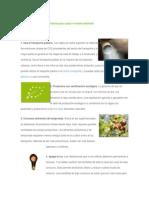 12 Sencillos Consejos Prácticos Para Cuidar El Medio Ambiente