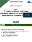 Aula_2_-_Aspectos_morfologicos.pdf