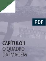 Cap_01_sel