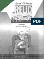 Freud Para Iniciantes