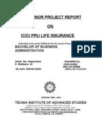 Minor Project Report on Icici Pru Life Insurance
