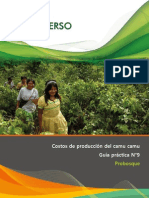 Guía-práctica-09-Camu-camu-costos