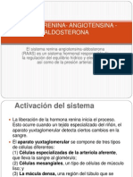 Sistema Renina- Angiotensina -Aldosterona
