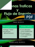 Cadenas Troficas-Flujo de Energia